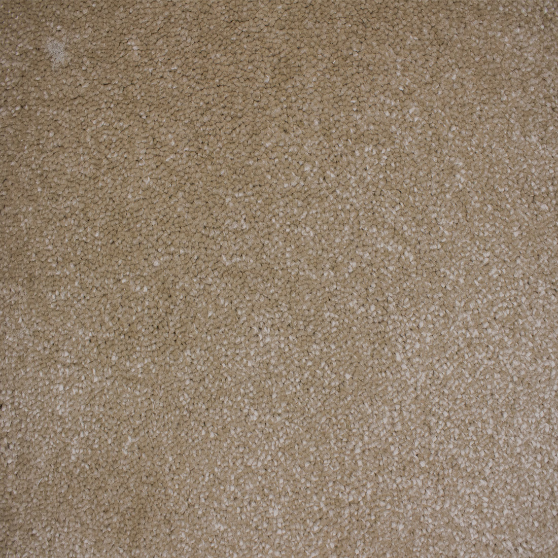 Vloerkleed Xilento Soft Sahara | 200 x 300 cm