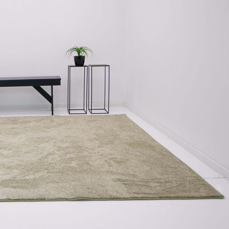 Vloerkleed Xilento Living Sage | 170 x 230 cm